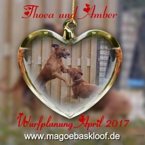 Amber und Thoea (1) 1